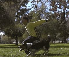 Man and Dog gif Funny Picture to share nº 17416