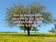 Aun el silencio tiene una historia que contar. http://iraymillet.com/escucha-el-silencio/ #Frases