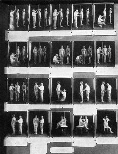 Anthropometry_exhibit.jpg (400×520)