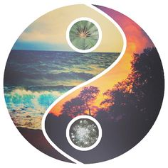 WELCOME TO YOUR VORTEX   The ultimate compilation of quality LOA material on the net. What would you do with your time, if money were no option? What makes your soul shine? You have the power within you to do anything, ANYTHING, that your beautiful heart desires.  The process has been said a million times in a million different ways. This can be condensed down to just two steps, and this is them; 1) Imagine your life the way you want it to be in specific vivid detail. Obsess over it every…