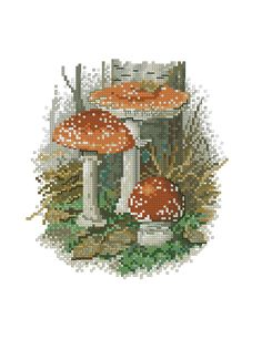 Kreuzstich Fall Cross Stitch, Counted Cross Stitch Kits, Cross Stitch Flowers, Cross Stitch Charts, Cross Stitch Designs, Cross Stitch Patterns, Cross Stitching, Cross Stitch Embroidery, Thread Work