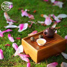 Sun's out, tea's out~ ☀ #teatime #tea #sunny #spring #magnolia #tree #chinesetea #puer #puerh #teapot #teaware #travelset #teacup #teavana #teaaddict #tealover #wymmtea #healthy #beautiful #organic #green #flowers #茶 #普洱 #中国茶