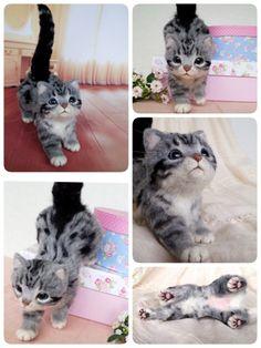 Adorable needle felted kitten