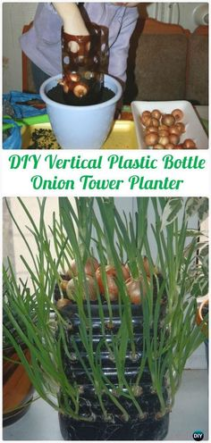 DIY Vertical Plastic Bottle Onion Tower Planter Instructions – DIY P… - Diy Garden Projects Plastic Bottle Planter, Empty Plastic Bottles, Vertical Vegetable Gardens, Comment Planter, Types Of Herbs, Tower Garden, Recycled Garden, Bottle Garden, Diy Garden Projects