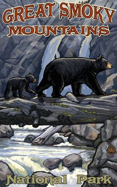 Great Smoky Mountains National Park Bears Poster
