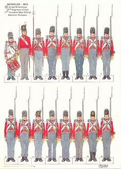 33 Rd Regiment of foot - 1 St Yorkshire West Riding - Company of the Battalion - Waterloo 1815 British Army Uniform, British Uniforms, Bataille De Waterloo, Waterloo 1815, War Of 1812, Military Insignia, Empire, Napoleonic Wars, Historical Costume