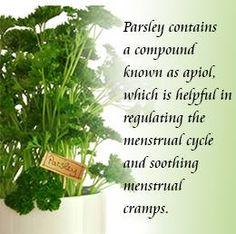 Women should definitely add parsley to their diet! #parsley #healthy #health