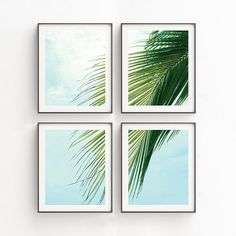 Check out our art print set selection for the very best in unique or custom, handmade pieces from our prints shops. Plage Art Mural, Grand Art Mural, Leaf Prints, Wall Art Prints, Beach Interior Design, Beach Wall Art, Tropical Decor, Beach House Decor, Large Wall Art
