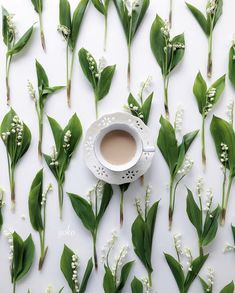 Content in a Cottage: Gorgeous Photo: Lilies of the Valley Flat Lay Flat Lay Photos, Floral Logo, Flat Lay Photography, Loose Leaf Tea, Coffee Love, Creative Photos, Lily Of The Valley, Happy Mothers, Spring Flowers