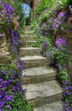 Floral Steps the quaint thatched cottages of Amberley England UK. Here you relax with these backyard landscaping ideas and landscape design. Porches, Garden Stairs, Garden Gates, Amazing Gardens, Beautiful Gardens, Landscape Design, Garden Design, India Landscape, Landscape Bricks