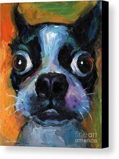 Cute Boston Terrier Puppy Art Canvas Print by Svetlana Novikova.  All canvas prints are professionally printed, assembled, and shipped within 3 - 4 business days and delivered ready-to-hang on your wall. Choose from multiple print sizes, border colors, and canvas materials.