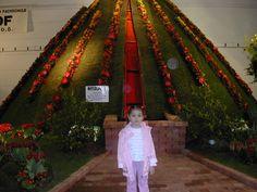 Blumenmesse 2011 Wels. Austria. Fair Grounds, Fun, Wels, Flowers, Hilarious