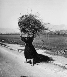 A woman carrying a bundle of firewood on her head. Photograph by Alfred Eisenstaedt. Italy, 1947.