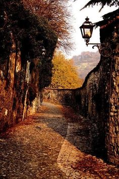 The autumn lantern lights the way, to the road of constant bliss; the land where autumn eternal is, where leaves fall to the ground with a kiss...