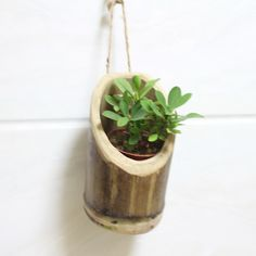Creative Life Home Decoration Handmade Wooden Natural Bamboo Indoor Garden Small Hanging Wall Planter Flower Pots-in Flower Pots & Planters from Home & Garden on Aliexpress.com | Alibaba Group