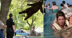 Top 20 Most Viral Photos According To Google! #14 Is Hilarious!