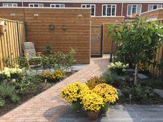 Deze mooie en landelijke stadstuin met veel groen en bloeiende planten hebben we met veel plezier aangelegd in Leiderdorp.