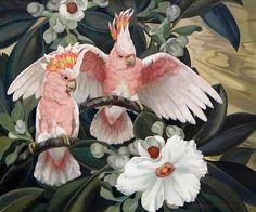 Art And Illustration, Tropical Birds, Exotic Birds, Ouvrages D'art, 5d Diamond Painting, Cockatoo, Bird Art, Beautiful Birds, Drawings