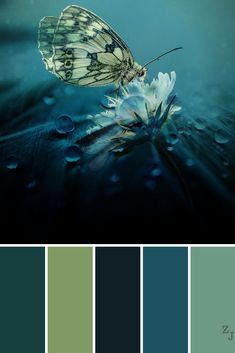Ideas Bedroom Paint Colors Colour Palettes For 2019 Paint Color Schemes, Colour Pallette, Color Combos, Colour Match, Colour Chart, Color Balance, Bedroom Paint Colors, My New Room, Color Theory