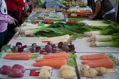 village vegetable show - Google Search