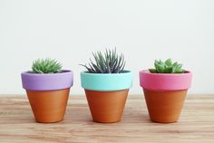 DIY painted terracotta pots.