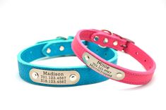 LUXOR Leather Dog Collar with Personalized Nameplate - 6 Colors on Etsy, $42.00