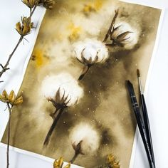 "watercolors on paper 9""x12"" by @WaldfrauArt Nature Illustrations, Cotton Plant, Watercolor, Plants, Pen And Wash, Watercolor Painting, Watercolour, Plant, Watercolors"