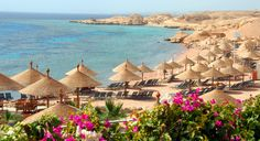Seek out the sun with a 7 night 5* all-inclusive to Sharm El Sheikh including meals, flights & transfers