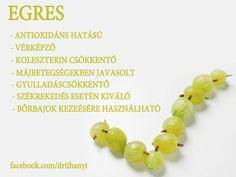 ❤️Életmód cikkek : Egres Zöldség és gyümölcsök hatásai