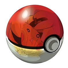 The life of a pokemon being in a pokéball