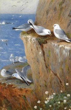Акварельное... Знаменитый шотландский художник-иллюстратор Archibald Thorburn - признан одним из величайших художников изображения птиц.. Обсуждение на LiveInternet - Российский Сервис Онлайн-Дневников