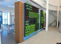 hanging gardens office - Google Search