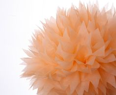 Peach 1 Large Tissue Paper Pom Poms