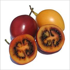 Roots 'n' Shoots: Tamarillo (Tree Tomato) - How to Grow: Fruit of the Month Weird Fruit, Strange Fruit, Fruit Of The Month, Tomato Tree, Cape Gooseberry, Unique Recipes, Fruit Trees, Fruits And Vegetables, Veggies