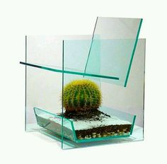 Cactus chair by Deger Cengiz. Visually challenging and interesting glass chair with cactus insert.