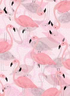 Flamingo Pattern by Georgiana Paraschiv