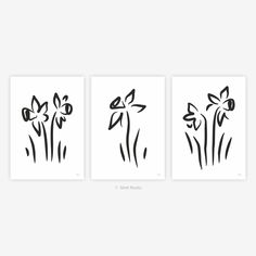 Set of three flower art prints. Black and white modern sketch. Daffodils wall art. My Flower, Flower Art, Elegant Flowers, Daffodils, Sketches, Art Prints, Black And White, Wall Art, Modern