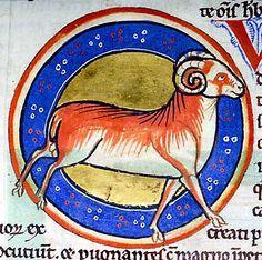Medieval Bestiary : Wether Gallery