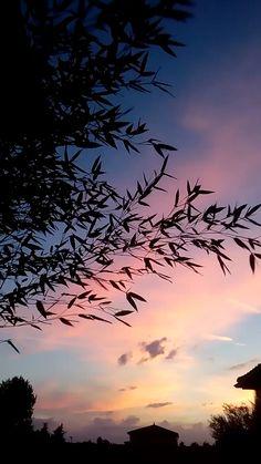Beautiful Nature Scenes, Beautiful Fantasy Art, Beautiful Nature Wallpaper, Sunset Photography, Landscape Photography, Travel Photography, Nature Pictures, Cool Pictures, Night Sky Photos
