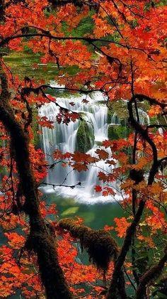 Lower Lewis River Falls ~ Washington . // Premium Canvas Prints & Posters // www.palaceprints.com
