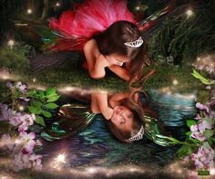 Enchanted Fairies Photography Studio   Children's Storybook Photography