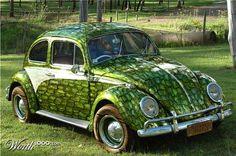 gator bug