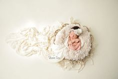 This beautiful cream fur is so nice and plush (the nap is inches high) and is the perfect touch for your newborn baby photography session! Fits perfectly in baskets, trench b Newborn Photography Poses, Newborn Posing, Newborn Shoot, Newborn Baby Photography, Newborn Photo Props, Photography Props, Baby Girl Newborn, Photography Outfits, Photography Website