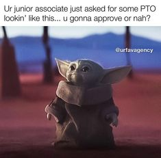 See more 'Baby Yoda' images on Know Your Meme! Yoda Funny, Yoda Meme, Baby Mickey, Work Memes, Work Humor, Memes Humor, Lab Humor, Funny Images, Funny Pictures