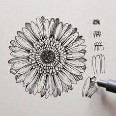 Art Drawings Sketches Simple, Pencil Art Drawings, Pencil Drawings Of Flowers, Chalk Drawings, Doodle Art Drawing, Mandala Drawing, Doodle Art Designs, Ipad Kunst, Mandala Art Lesson