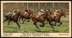 """#3 The Two Thousand Guineas ~ Boguslavsky's Cigarettes, """"Big Events on the Turf"""" (series of 12 postcard size, issued in 1924) 