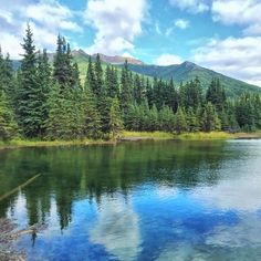 Horseshoe Trail is located inside of Denali National Park in Alaska. This area provides a ton of lakes, open meadows, and free ranging wildlife, such as moose, grizzly bears, and caribou.