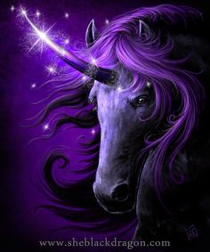 Black Magic Unicorn ♥ Next to blue, purple is my favorite color. This perfectly fits that bill.
