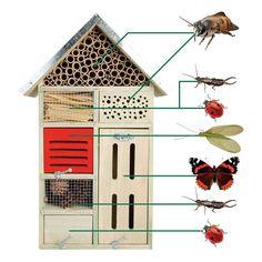 Esschert Design Insektenhotel L Nistkasten Nisthöhle x x cm NEU Slugs In Garden, Garden Bugs, Garden Insects, Garden Plants, Bug Hotel, Garden Projects, Diy Projects, Bee House, Vegetable Garden Tips