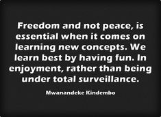 Freedom and not peace, is essential when it comes on learning... Meaningful Words, Be Yourself Quotes, Me Quotes, Have Fun, Freedom, Things To Come, Cards Against Humanity, Peace, Learning